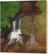 Hawaiian Stream Wood Print