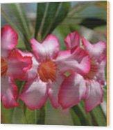 Hawaiian Flowers Wood Print