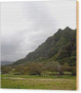 Hawaiin Landscape Wood Print