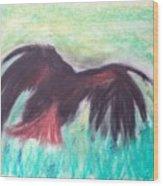 Hawk Wood Print