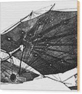 Hawk Glider, 1896 Wood Print