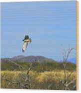 Hawk In Flight Over The Desert Wood Print