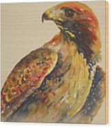 Hawk Messenger Wood Print