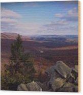 Hawk Mountain Sanctuary Wood Print by David Dehner