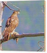 Hawk With Prey Wood Print
