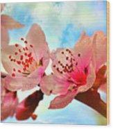 Hawthornes Wood Print