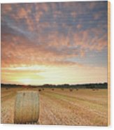 Hay Bale Field At Sunrise Wood Print by Stu Meech