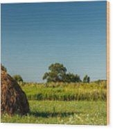 Hay Bale On A Rural Field Wood Print
