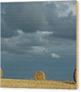 Hay Bales In Harvested Corn Field Wood Print