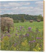 Hay Bales In Summer  Wood Print