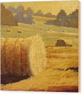 Hay Bales Of Bordeaux Wood Print