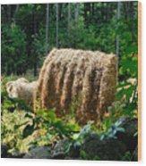 Hay Bay Rolls 2 Wood Print