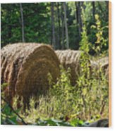 Hay Bay Rolls Wood Print