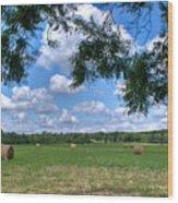 Hay Field In Summertime Wood Print