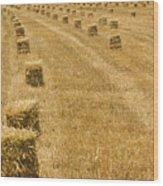 Hay Field Wood Print
