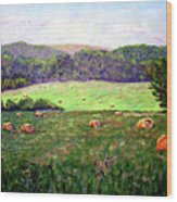 Hay Field Wood Print