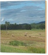 Hay Fields In The Adirondacks Wood Print