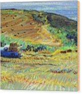 Hay Harvest On The Coast Wood Print