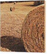 Hay In The Field Wood Print