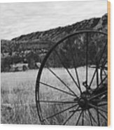 Hay Rake At The Ewing-snell Ranch Wood Print by Larry Ricker