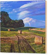 Hay Rolls On The Farm By Christopher Shellhammer Wood Print