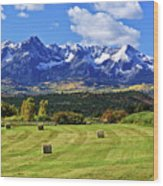 Hay With A View Wood Print
