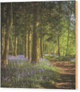 Hay Wood Bluebells 3 Wood Print