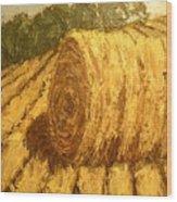 Haybale Hill Wood Print by Jaylynn Johnson