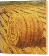 Haybale II Wood Print by Jaylynn Johnson
