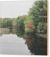 Haybrook Maine Foliage 6 Wood Print