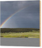 Hayden Valley Rainbow Wood Print
