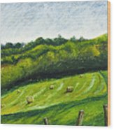 Hayfield Wood Print