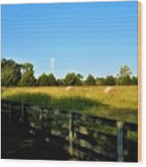 Hayfield With Distant Cell Tower Wood Print