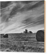 Hayrolls And Field Wood Print by Steven Ainsworth
