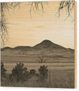 Haystack Mountain - Boulder County Colorado - Sepia Evening Wood Print