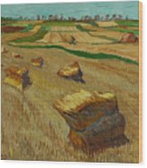Haystacks in Moravia Wood Print