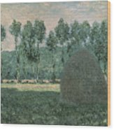 Haystacks Near Giverny Wood Print