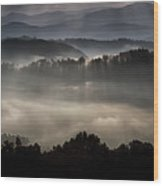 Hazed In Mystery Wood Print