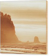 Hazy Beach  Wood Print