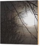 Hazy Moon Through The Trees Wood Print