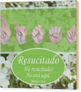 He Is Risen Spanish Wood Print