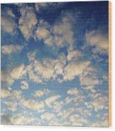 Head In The Clouds- Art By Linda Woods Wood Print