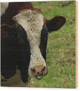 Head Of A Bull On A Farm Wood Print