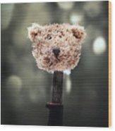 Head Of A Teddy Wood Print by Joana Kruse