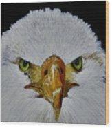 Head Of An Eagle  Wood Print