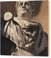 Head Of Nero In Venice Wood Print