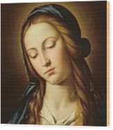 Head Of The Madonna Wood Print