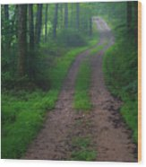 Heading Out Wood Print
