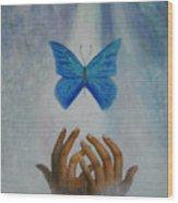 Healing Hands Wood Print by Terri Maddin-Miller