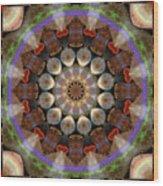 Healing Mandala 30 Wood Print